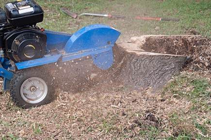 A picture of a stump grinding equipment in Fort Wayne, Indiana