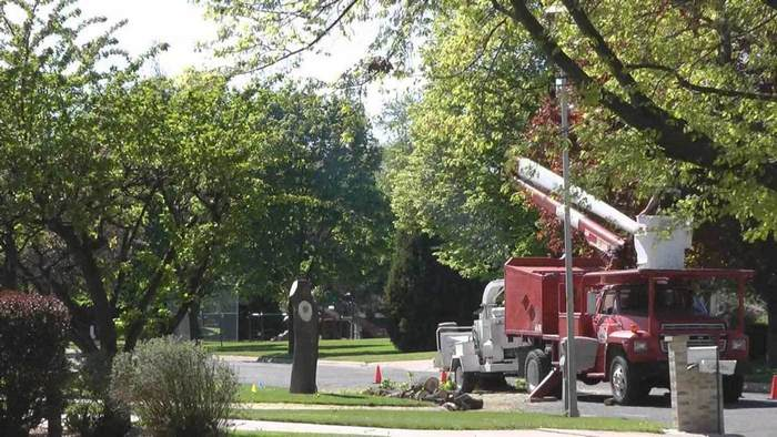 A picture of a tree service company in Fort Wayne, Indiana