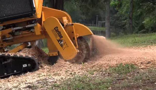 tree stump grinding Fort Wayne